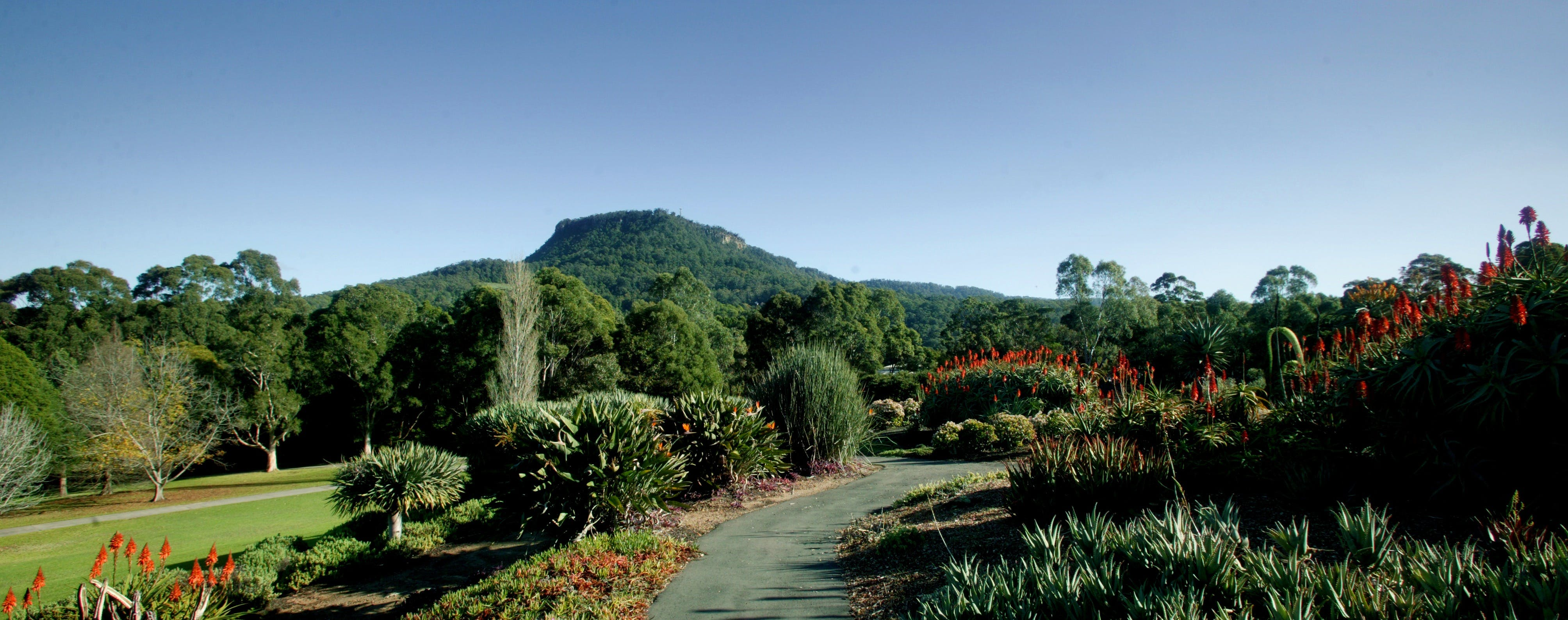 Botanic Garden Wollongong - Accommodation Find