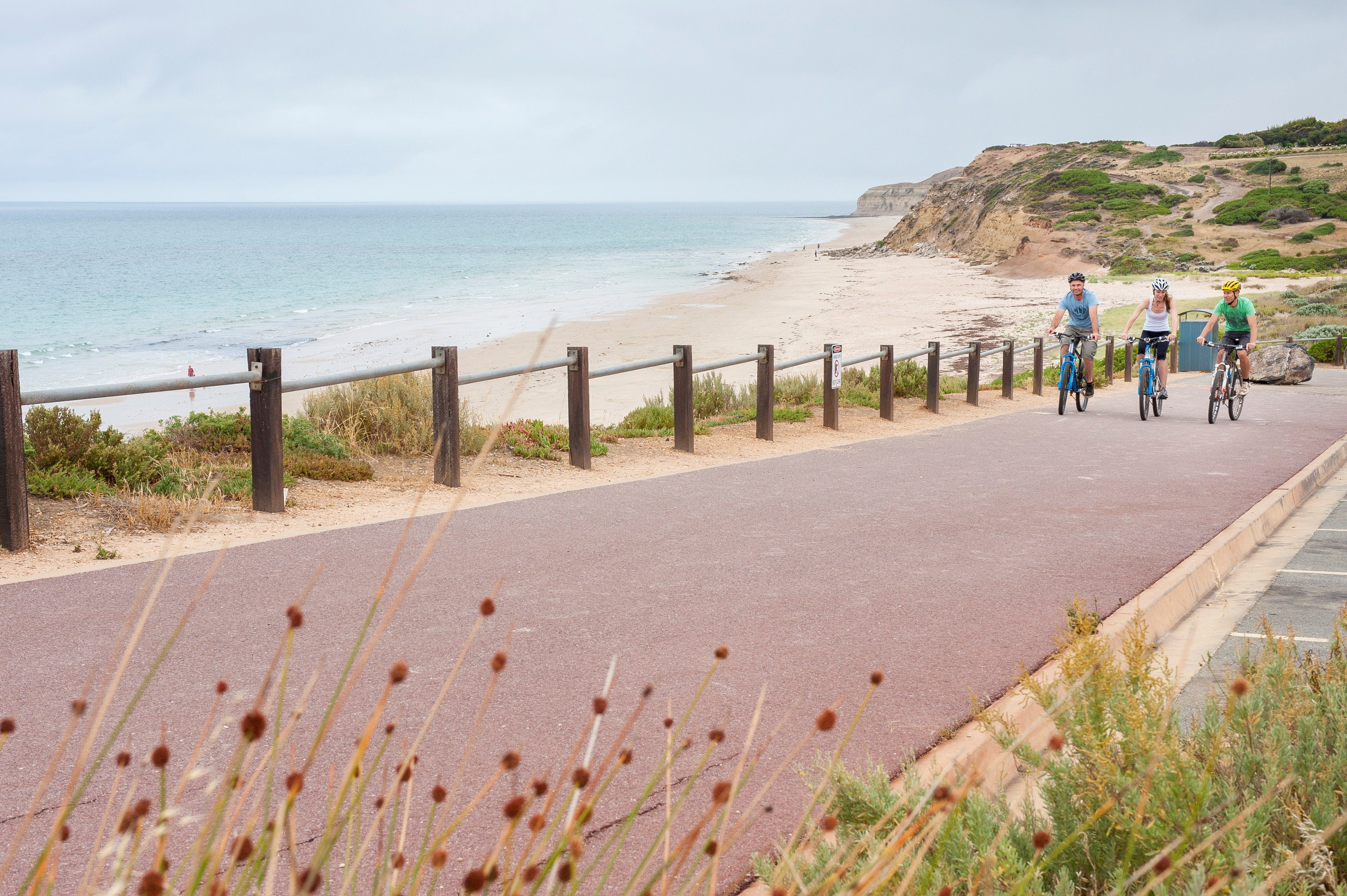Coast to Vines Rail Trail - Accommodation Find
