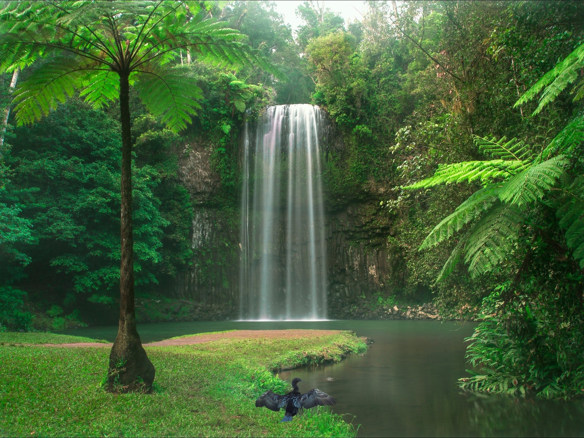 Atherton Tablelands - Accommodation Find