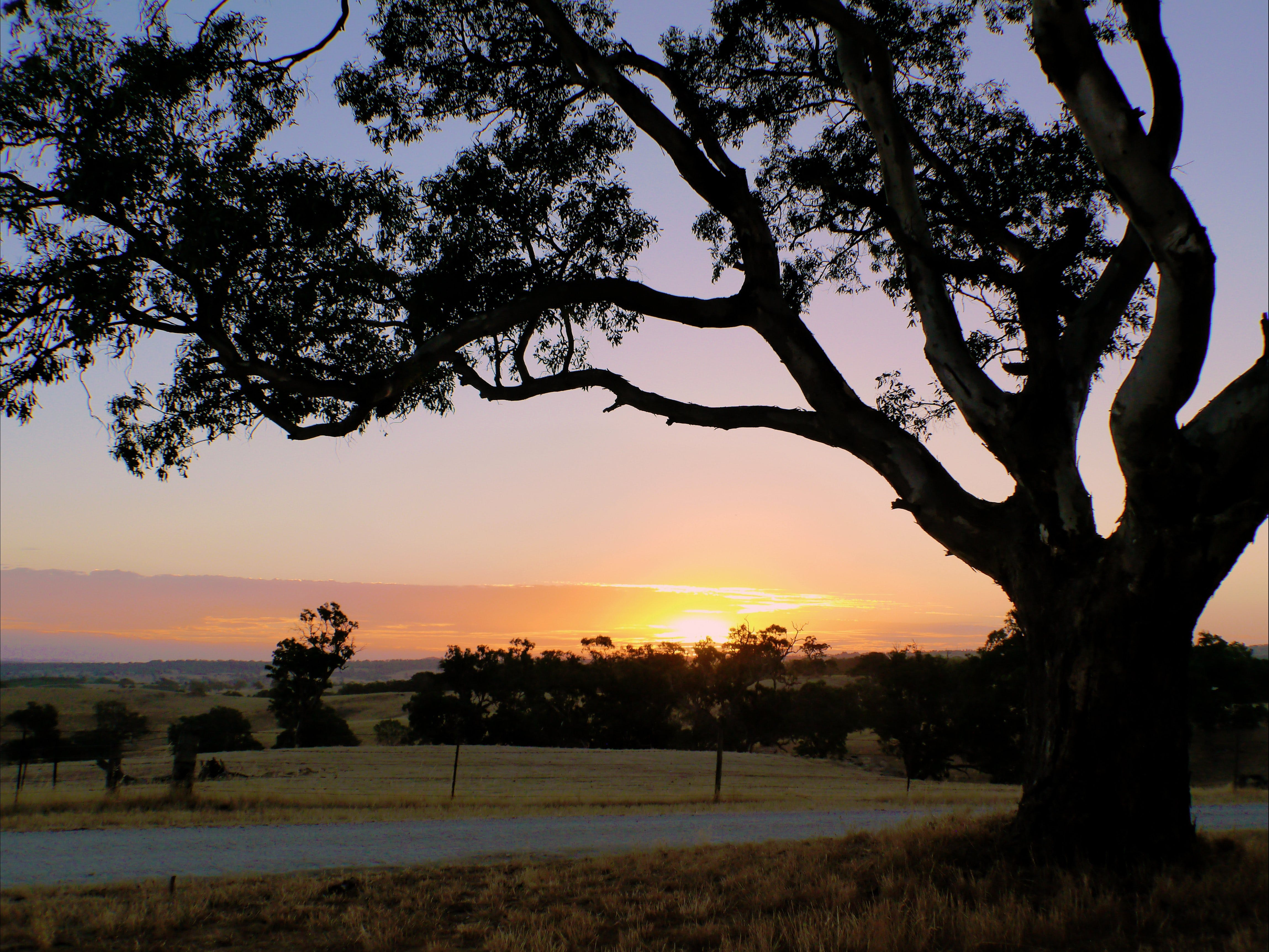 Eden Valley Lookout - Accommodation Find