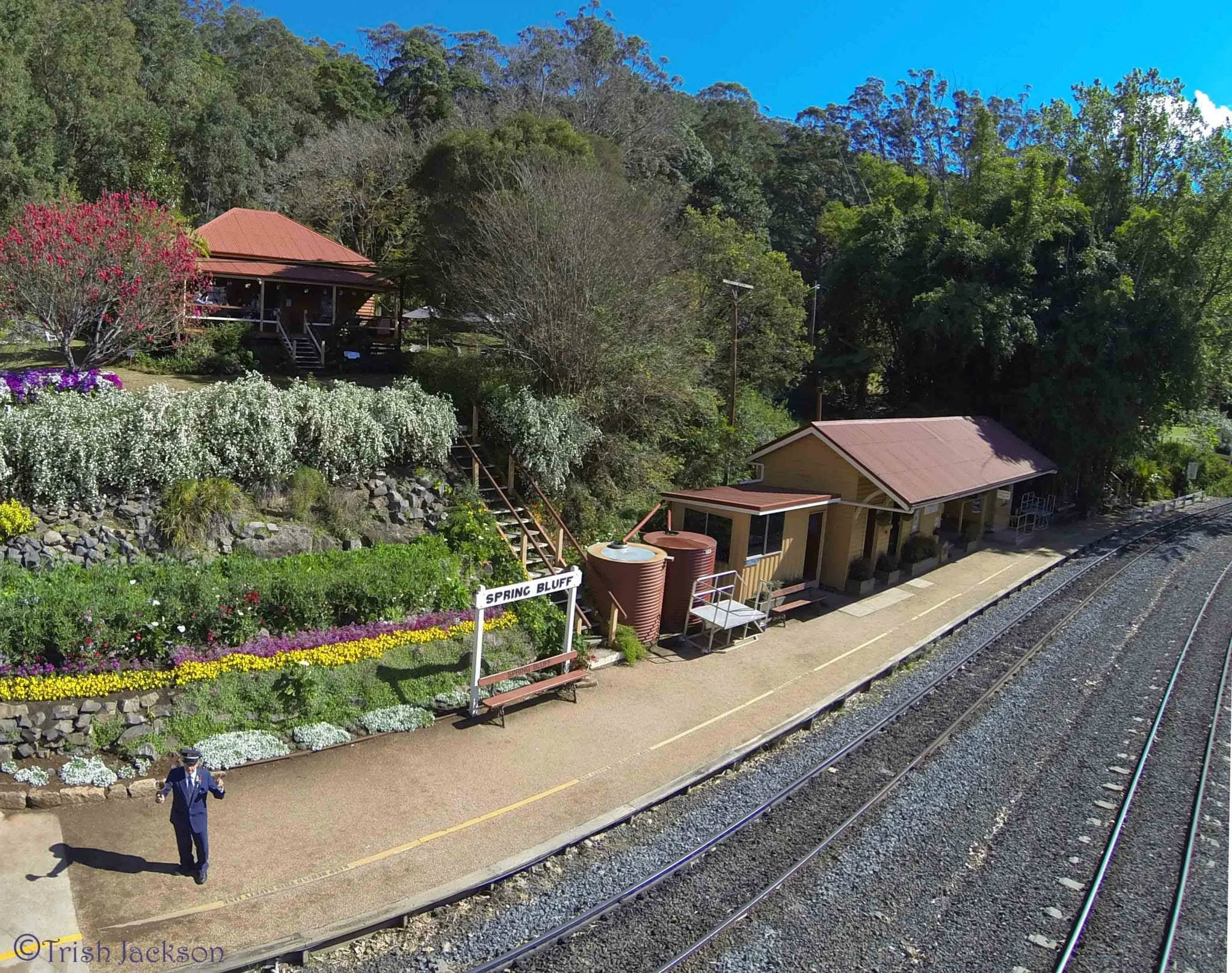 Spring Bluff Railway Station - Accommodation Find