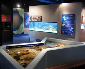 Marine and Freshwater Discovery Centre - Accommodation Find