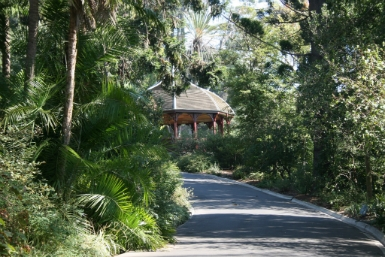 Royal Botanic Gardens Victoria - Accommodation Find