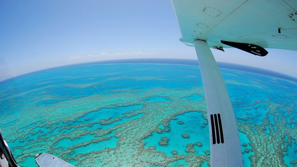 Air Whitsunday Day Tours - Accommodation Find