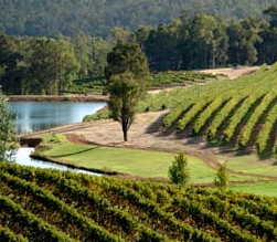 Brookhampton Estate Vineyard - Accommodation Find