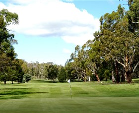 Cooma Golf Club - Accommodation Find