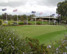 Tocumwal Golf Club - Accommodation Find