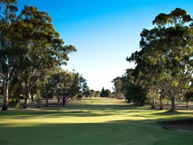 Loxton Golf Club - Accommodation Find