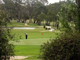Mount Barker-Hahndorf Golf Club - Accommodation Find