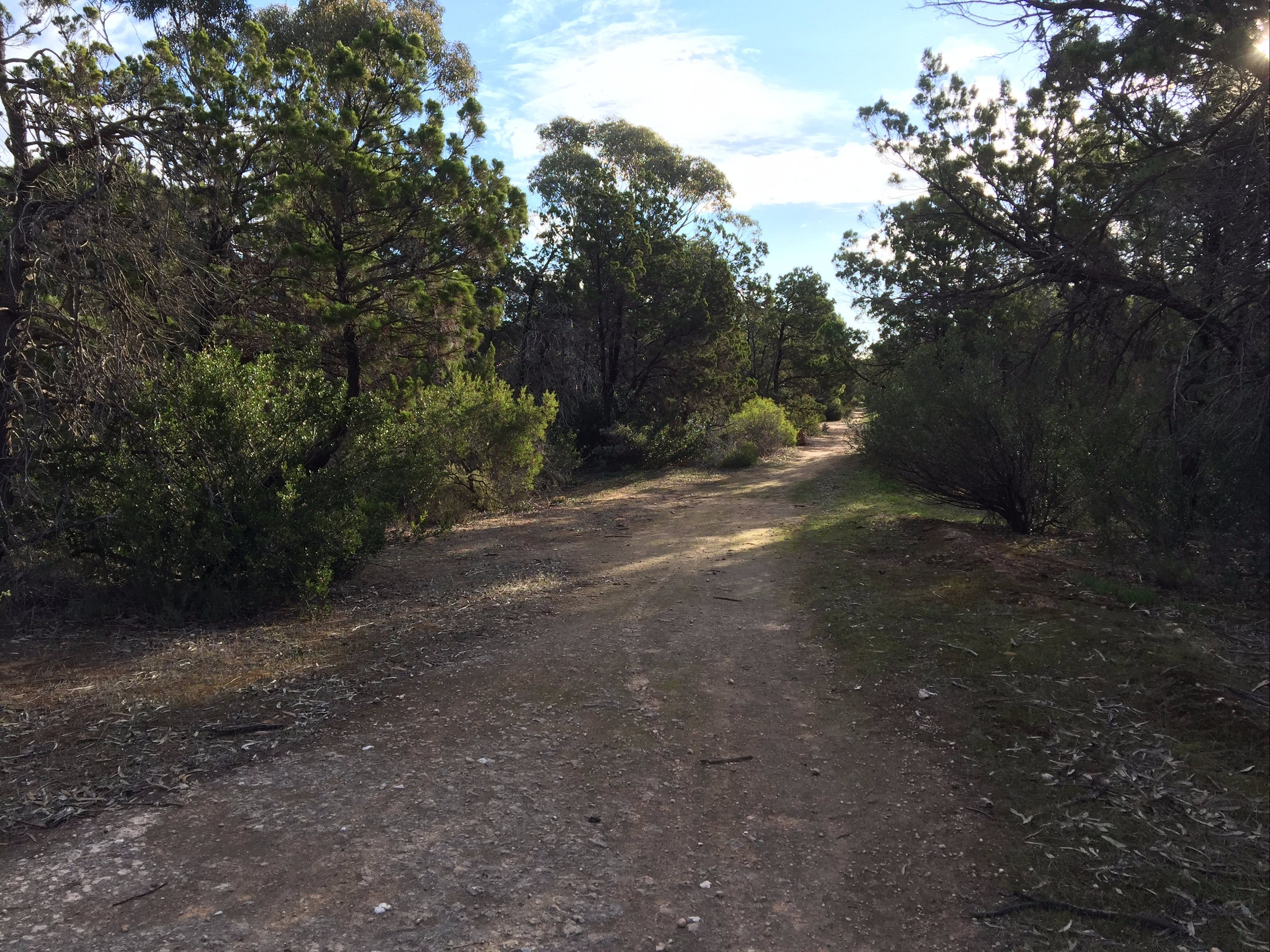 Victoria Park Moonta monthly walks - Accommodation Find