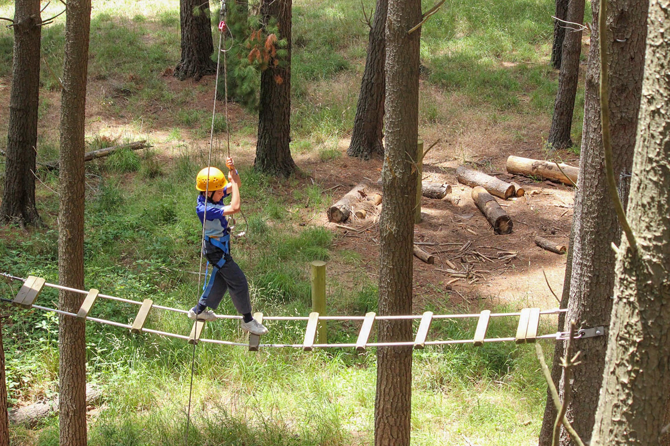 July 2020 Holidays- Go Wild at the Mt Lofty Adventure Hub - Accommodation Find