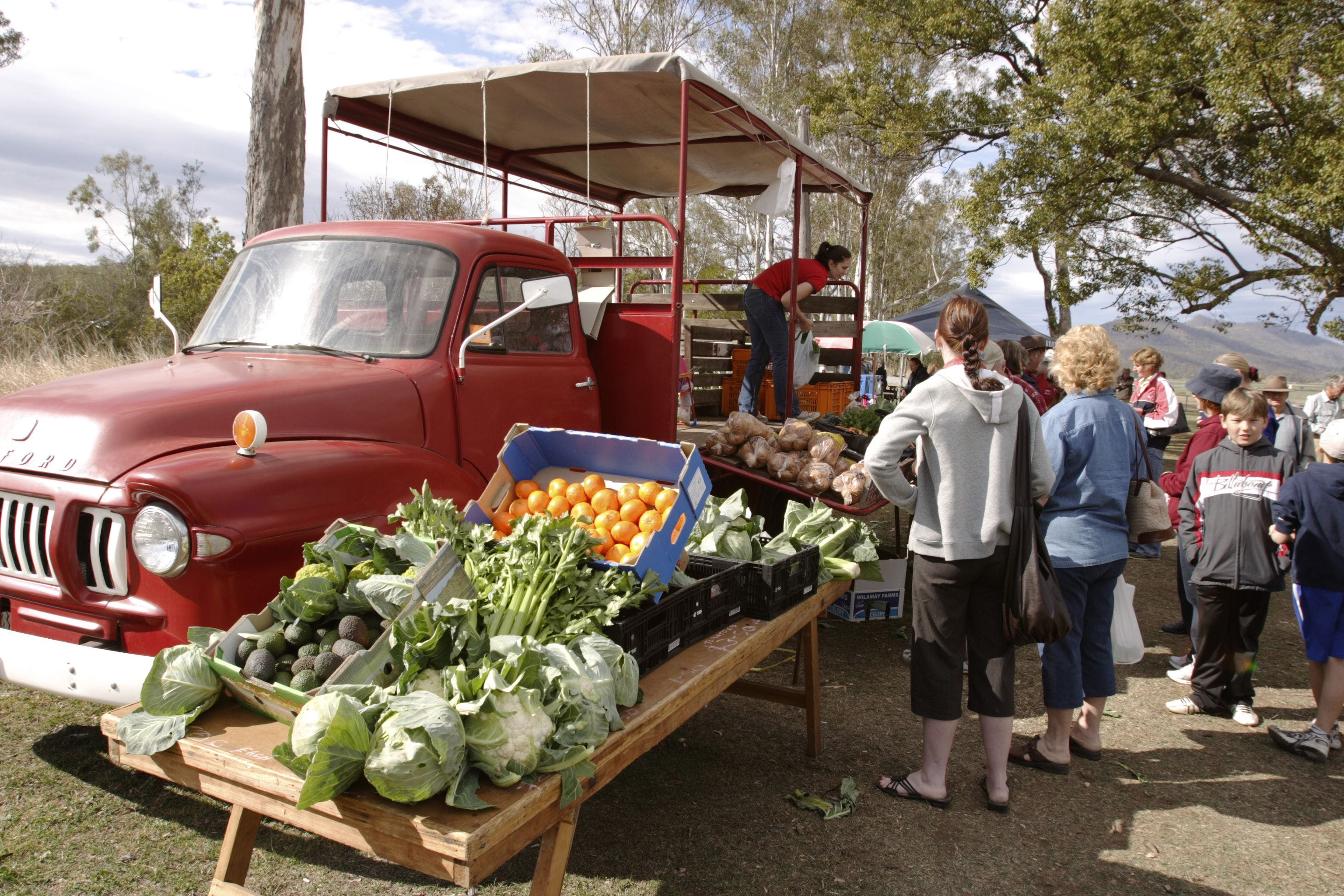 Murphys Creek Markets - Accommodation Find