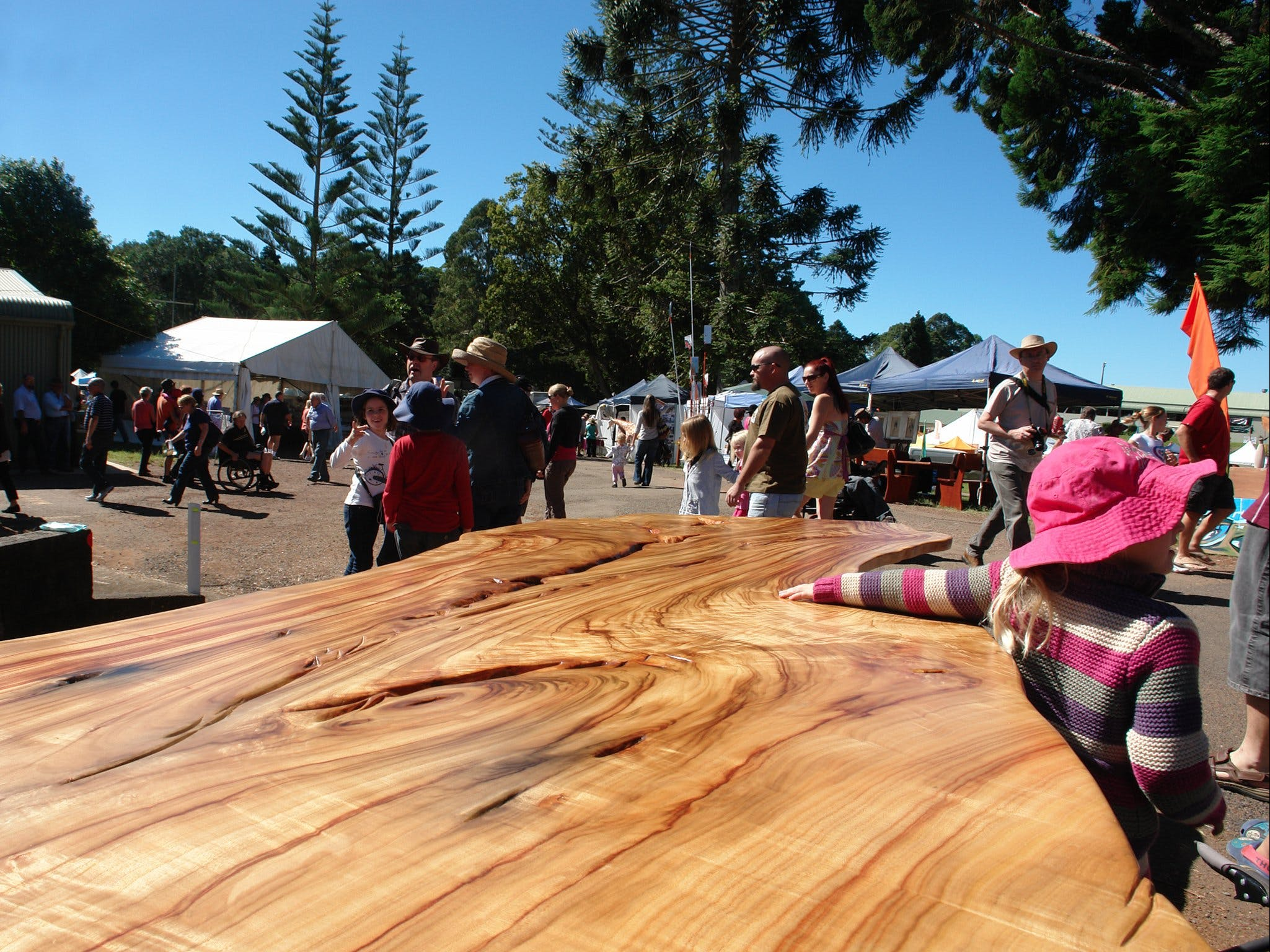 Maleny Wood Expo From Seed to Fine Furniture - Accommodation Find
