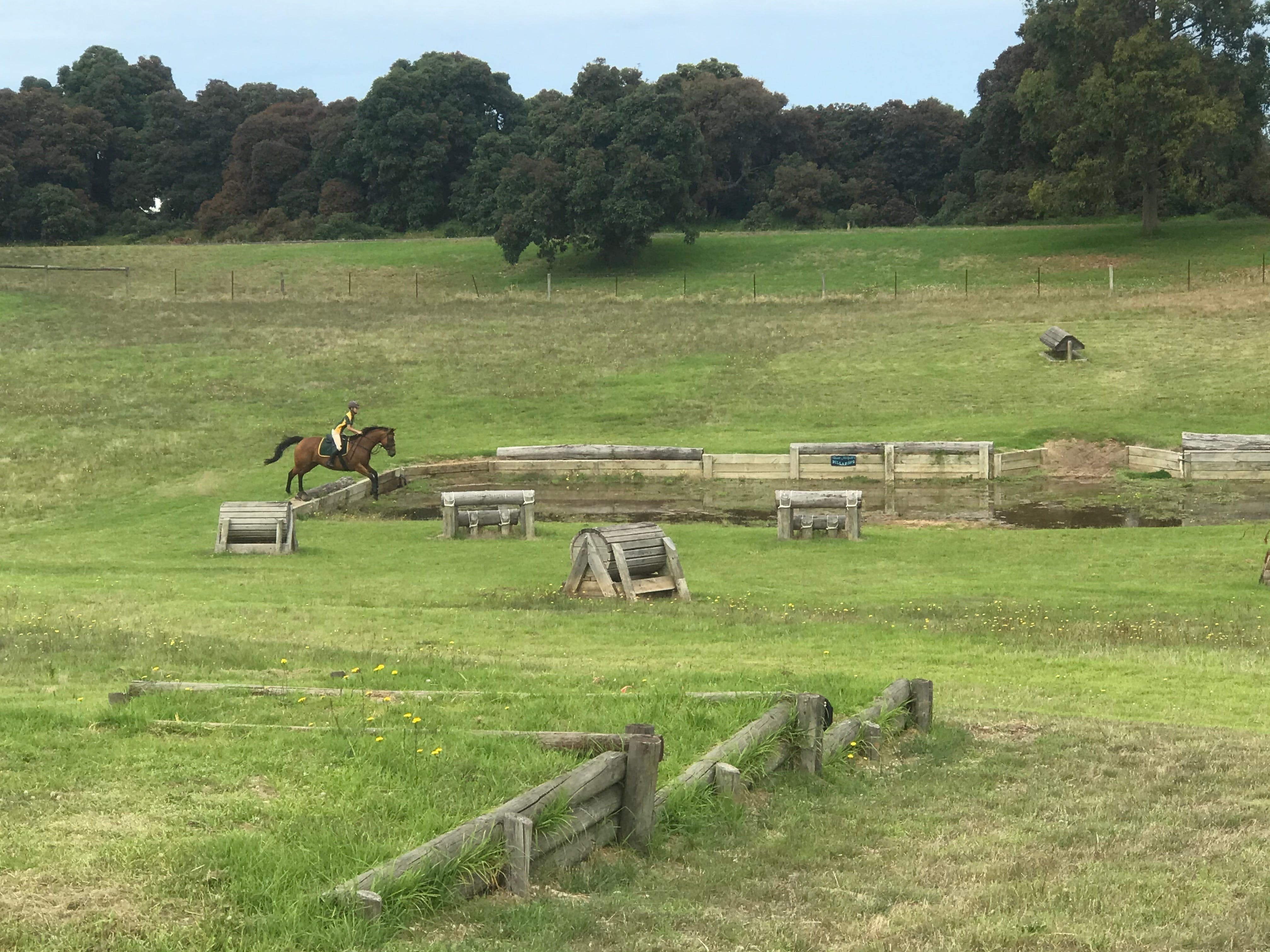 Mount Gambier and District Pony Club Horse Trials 2020 - Accommodation Find