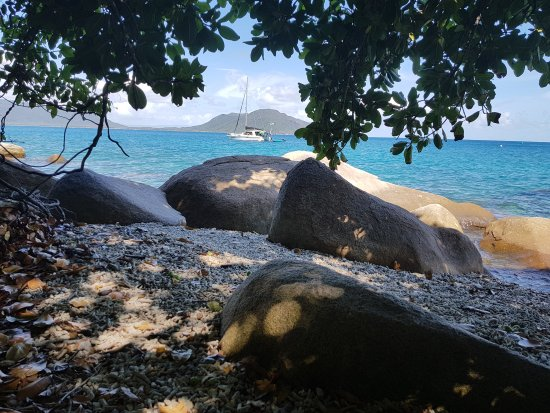 Fitzroy Island Resort - Accommodation Find