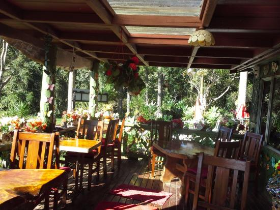 Suzannes's Hideaway Cafe - Accommodation Find