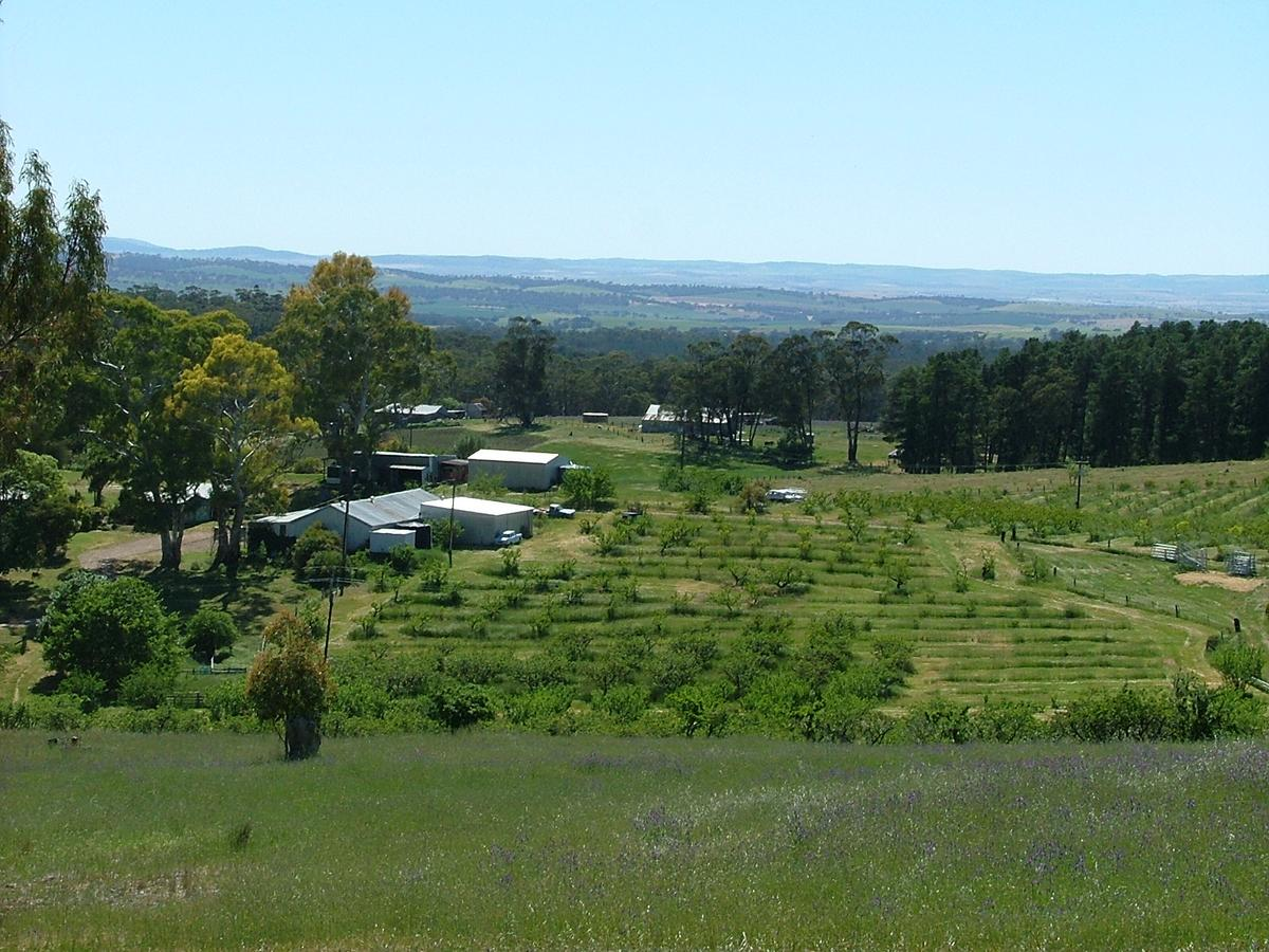 Taralee Orchards - Accommodation Find