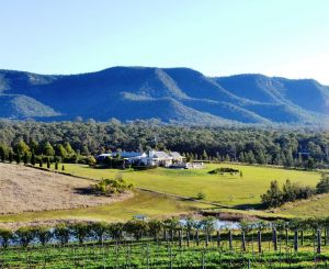 Grapevines Boutique Accommodation - Accommodation Find