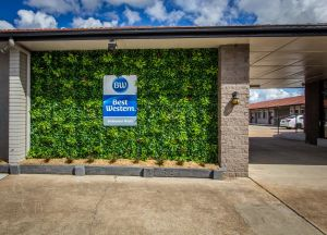 Best Western Endeavour Motel - Accommodation Find