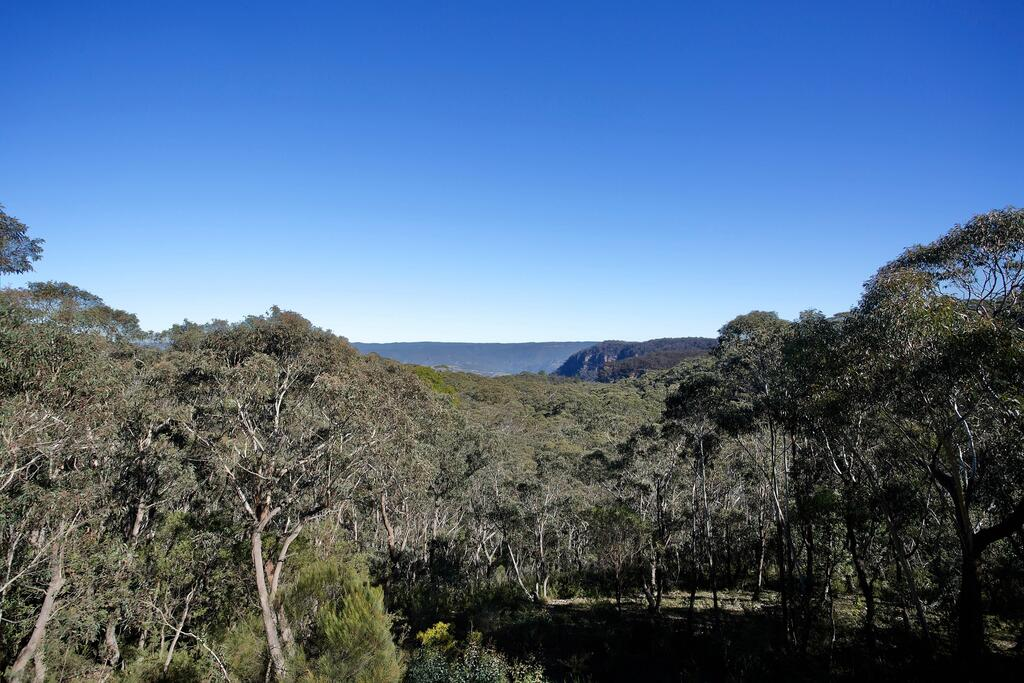 Narrow Neck Lodge - Accommodation Find