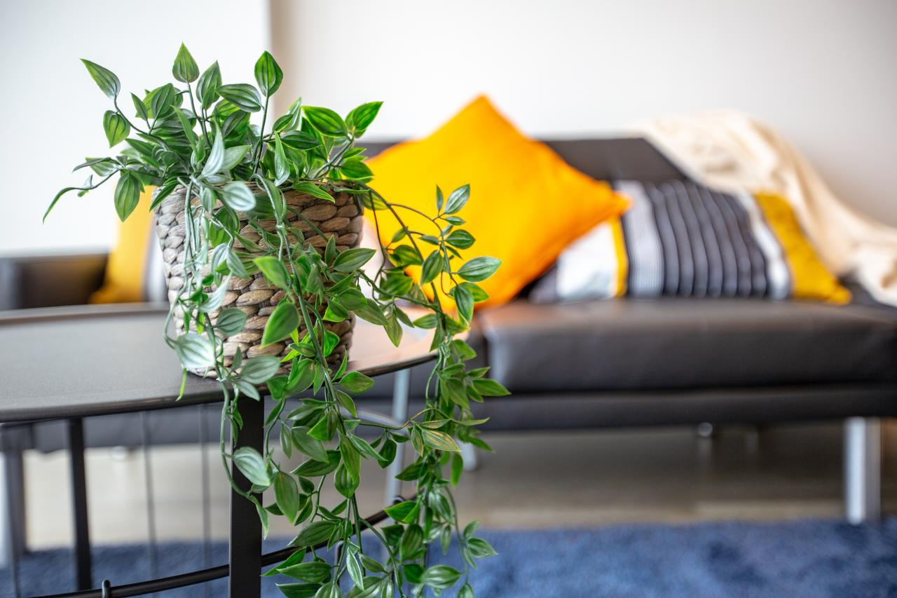 Brand New One/Two - Bed Room Apartment  Maribyrnong - Accommodation Find