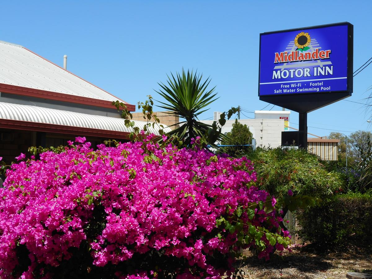 Midlander Motor Inn - Accommodation Find